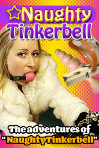 naughty tinkerbell banner